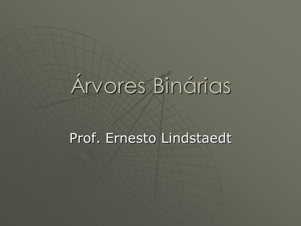 Prof. Ernesto Lindstaedt