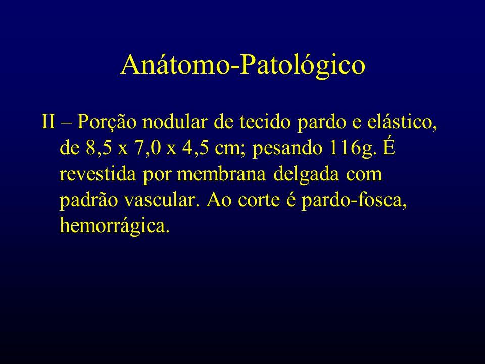 Anátomo-Patológico