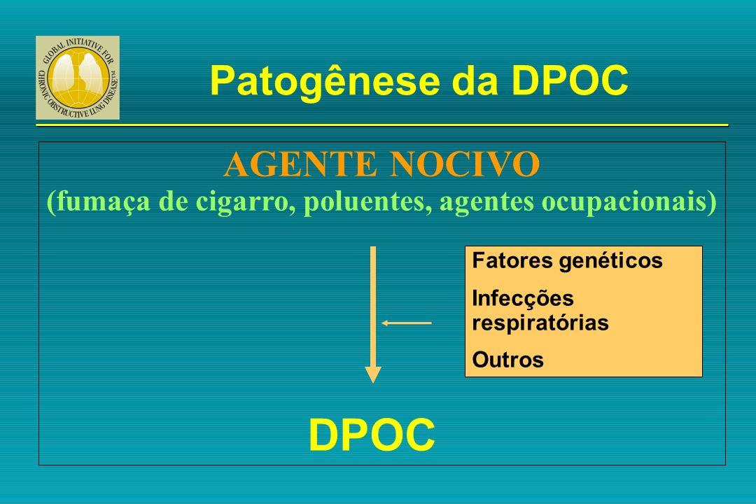 AGENTE NOCIVO (fumaça de cigarro, poluentes, agentes ocupacionais)