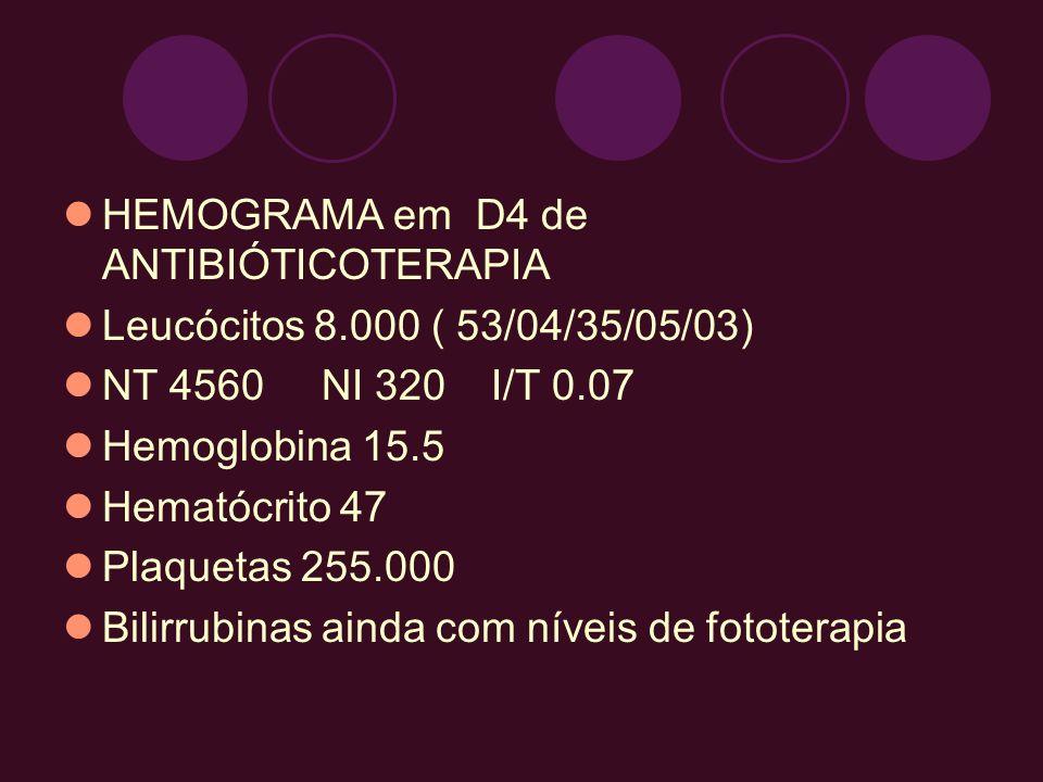 HEMOGRAMA em D4 de ANTIBIÓTICOTERAPIA