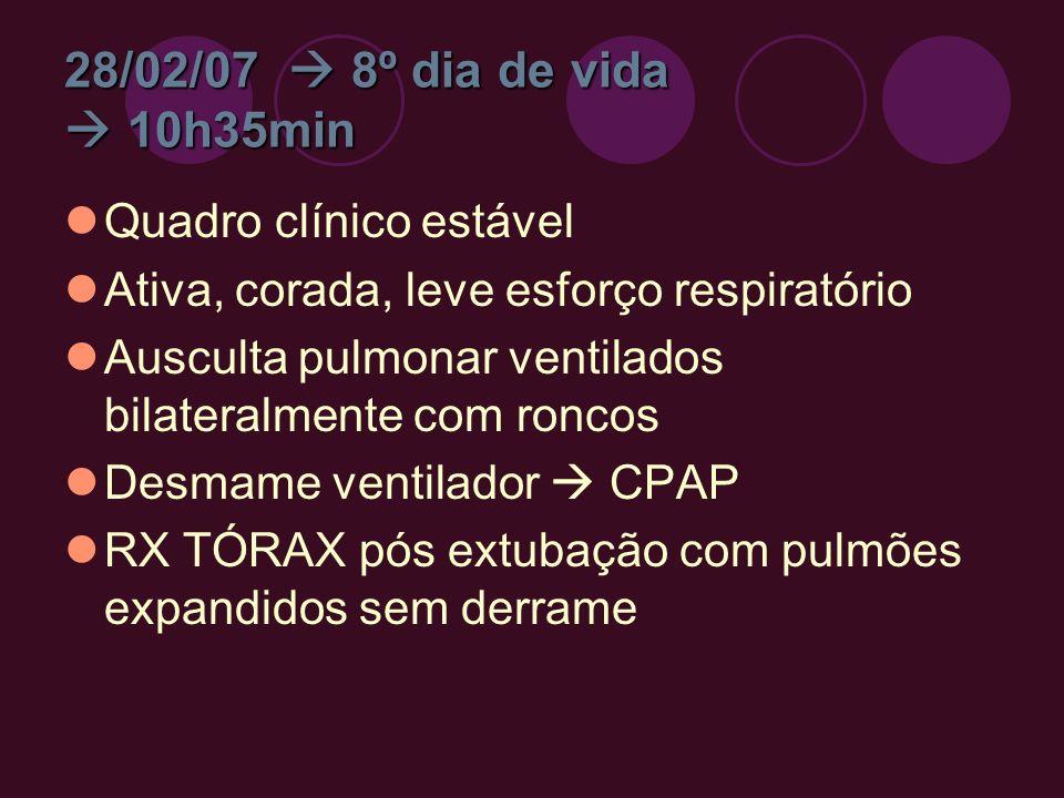 28/02/07  8º dia de vida  10h35min Quadro clínico estável