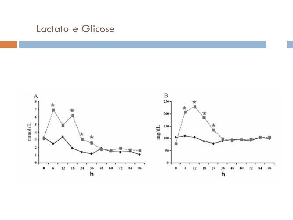 Lactato e Glicose