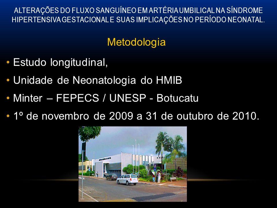 Unidade de Neonatologia do HMIB Minter – FEPECS / UNESP - Botucatu
