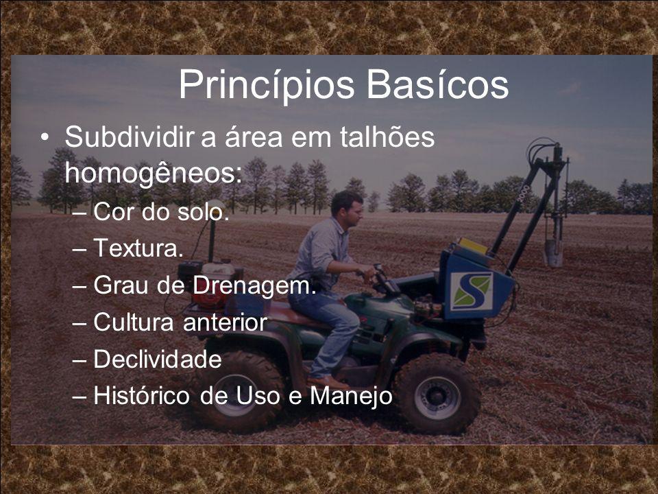 Princípios Basícos Subdividir a área em talhões homogêneos: