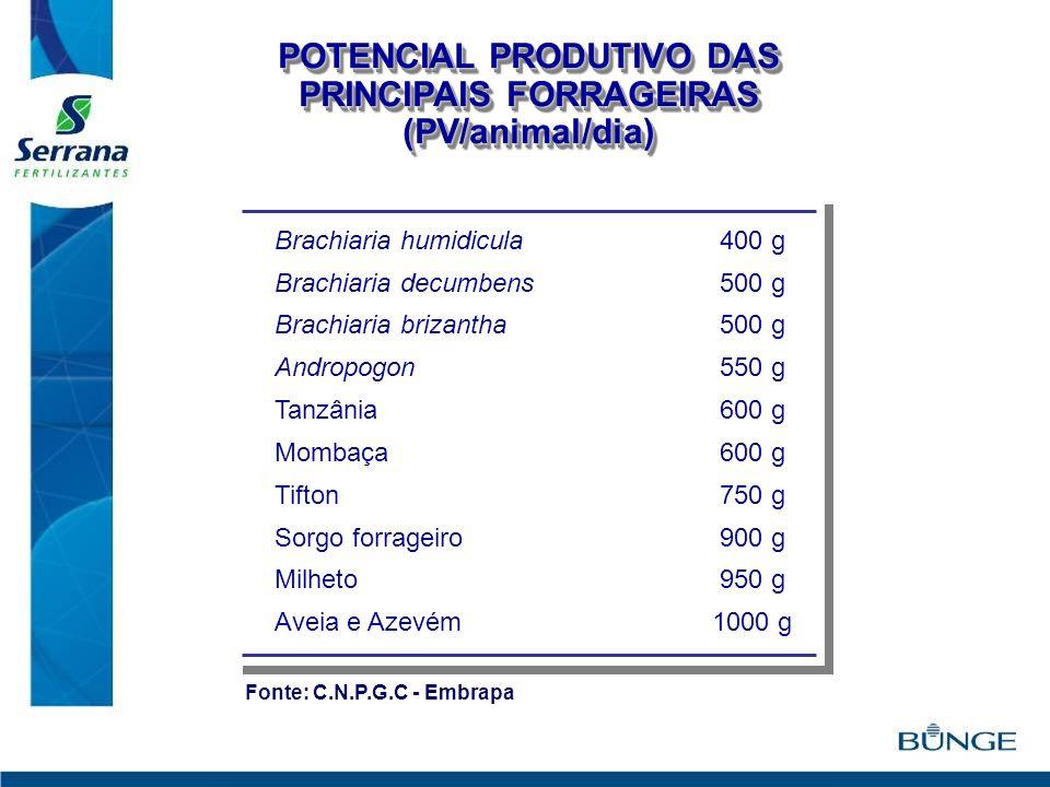 POTENCIAL PRODUTIVO DAS PRINCIPAIS FORRAGEIRAS