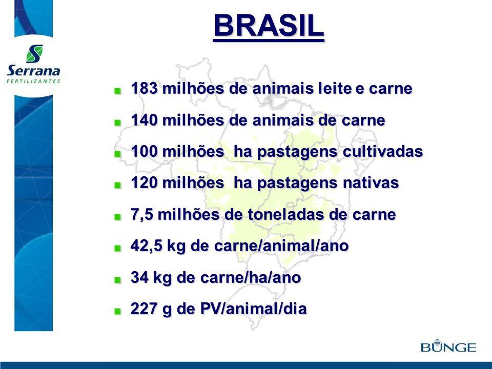 BRASIL 183 milhões de animais leite e carne
