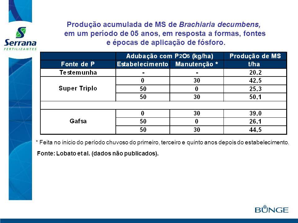 Produção acumulada de MS de Brachiaria decumbens,