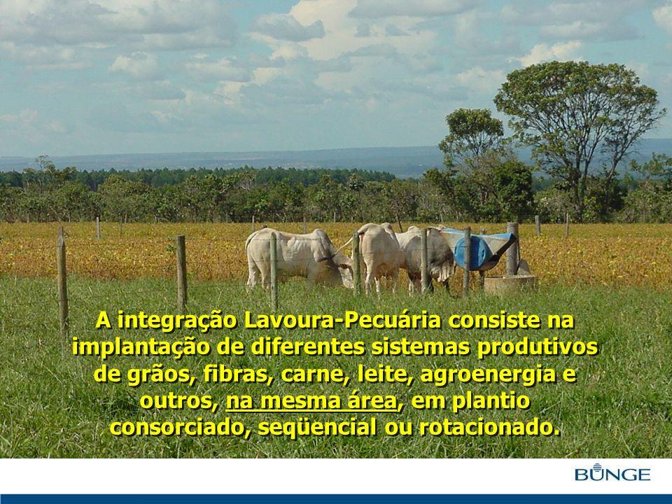 A integração Lavoura-Pecuária consiste na implantação de diferentes sistemas produtivos de grãos, fibras, carne, leite, agroenergia e outros, na mesma área, em plantio consorciado, seqüencial ou rotacionado.