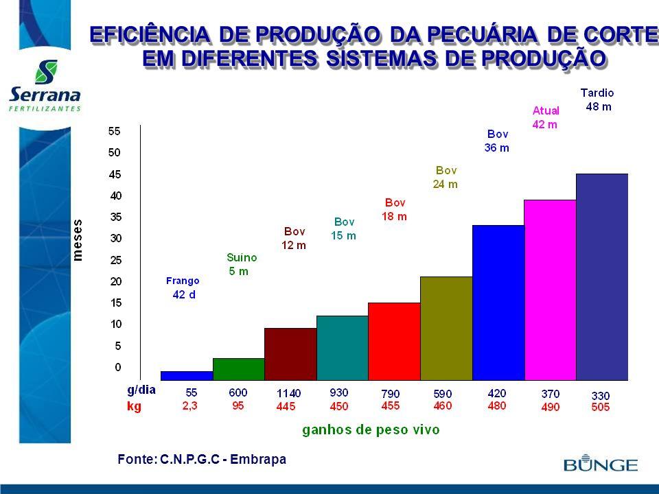 EFICIÊNCIA DE PRODUÇÃO DA PECUÁRIA DE CORTE EM DIFERENTES SISTEMAS DE PRODUÇÃO