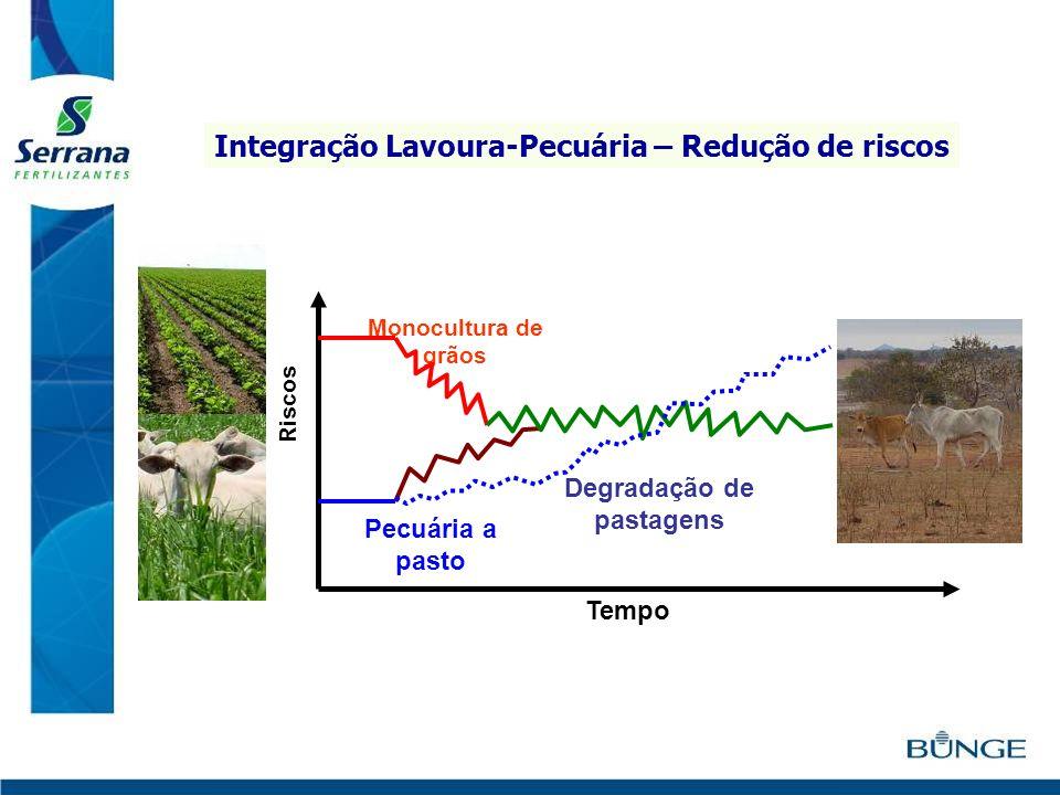 Integração Lavoura-Pecuária – Redução de riscos
