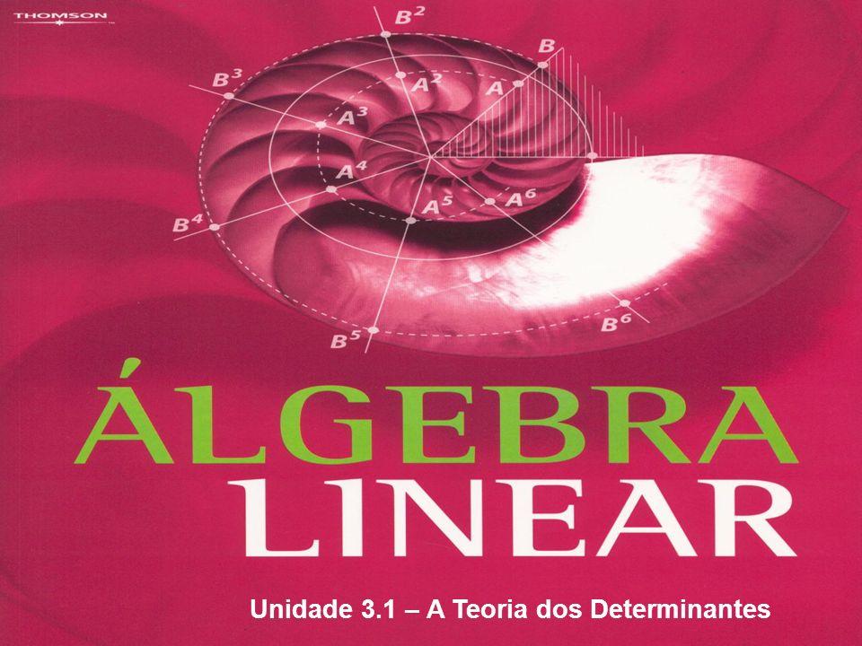 Unidade 3.1 – A Teoria dos Determinantes