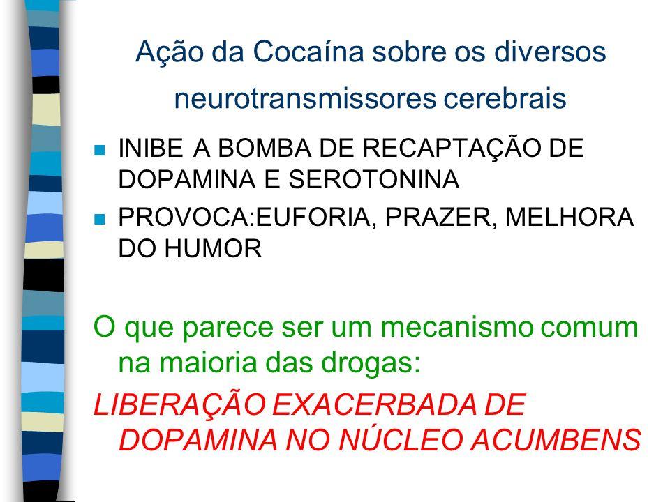 Ação da Cocaína sobre os diversos neurotransmissores cerebrais