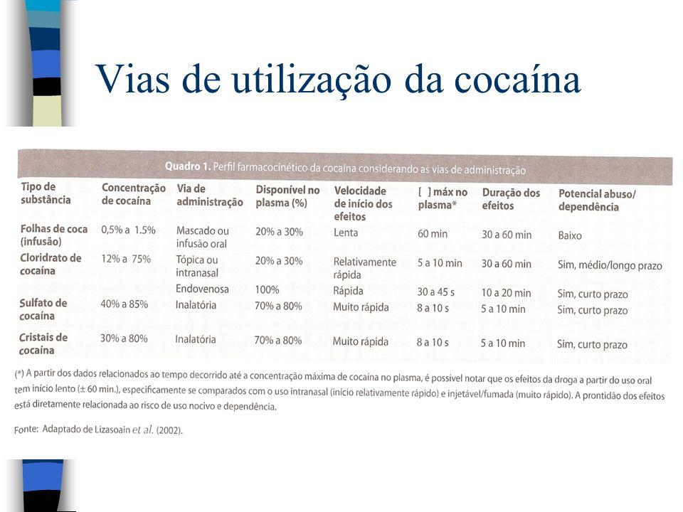 Vias de utilização da cocaína
