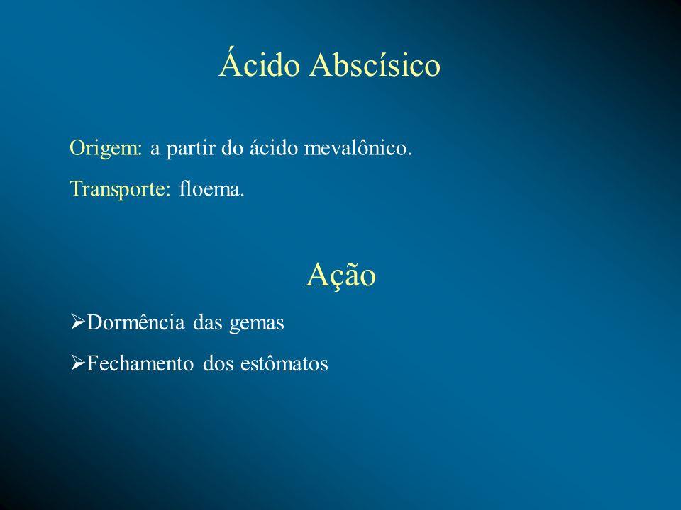 Ácido Abscísico Ação Origem: a partir do ácido mevalônico.