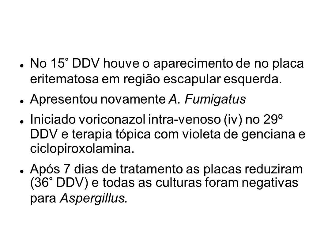 No 15° DDV houve o aparecimento de no placa eritematosa em região escapular esquerda.