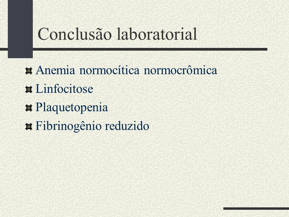 Conclusão laboratorial