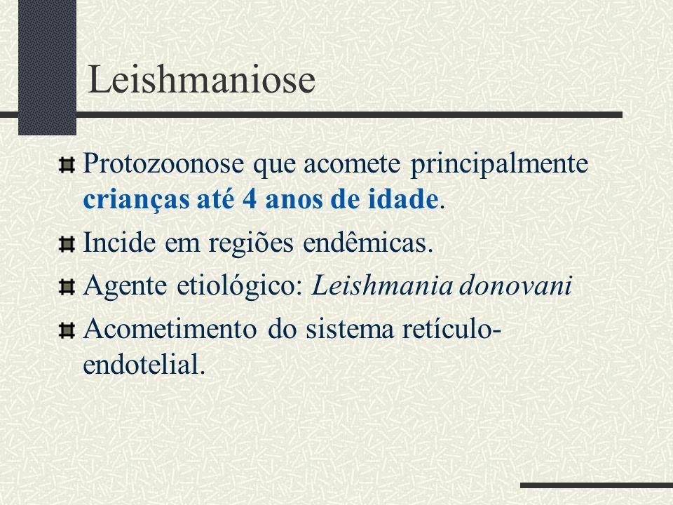 Leishmaniose Protozoonose que acomete principalmente crianças até 4 anos de idade. Incide em regiões endêmicas.