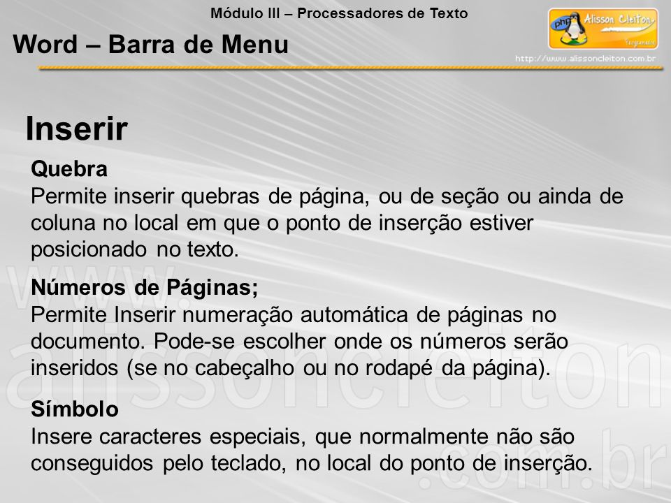 Inserir Word – Barra de Menu Quebra