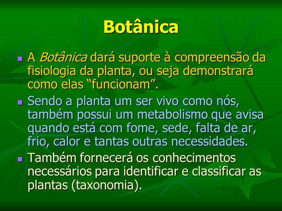 Botânica A Botânica dará suporte à compreensão da fisiologia da planta, ou seja demonstrará como elas funcionam .
