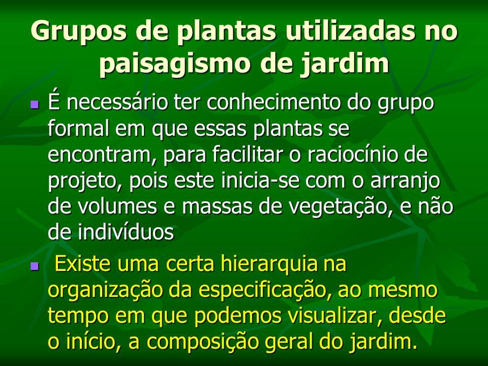 Grupos de plantas utilizadas no paisagismo de jardim