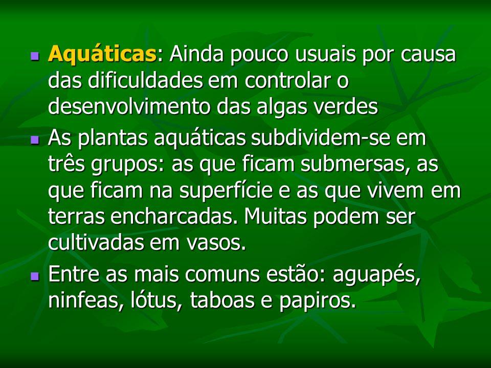 Aquáticas: Ainda pouco usuais por causa das dificuldades em controlar o desenvolvimento das algas verdes
