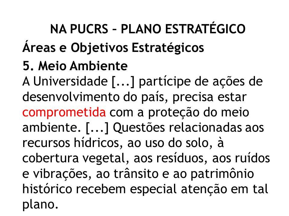 NA PUCRS – PLANO ESTRATÉGICO