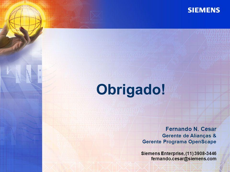 Obrigado! Fernando N. Cesar Gerente de Alianças &