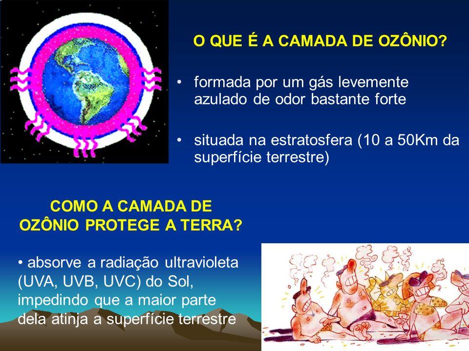 O QUE É A CAMADA DE OZÔNIO COMO A CAMADA DE OZÔNIO PROTEGE A TERRA