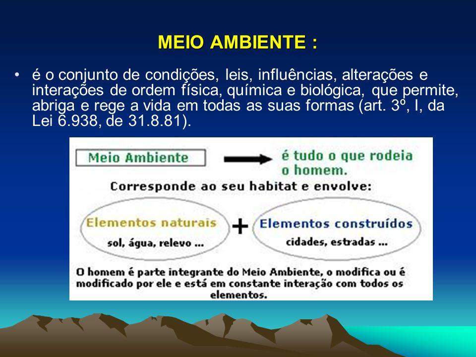 MEIO AMBIENTE :