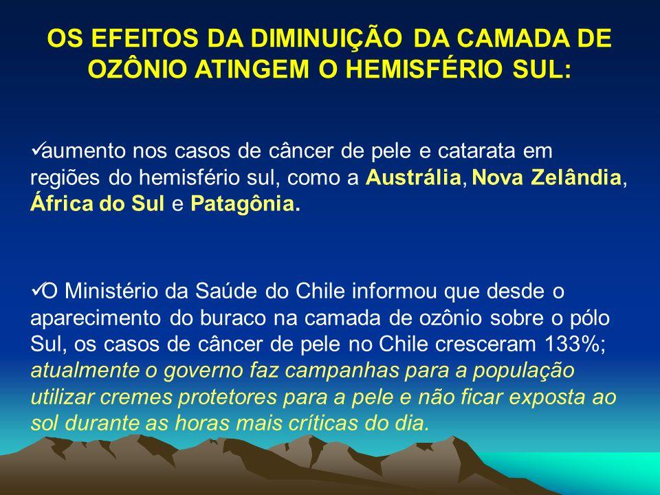 OS EFEITOS DA DIMINUIÇÃO DA CAMADA DE OZÔNIO ATINGEM O HEMISFÉRIO SUL: