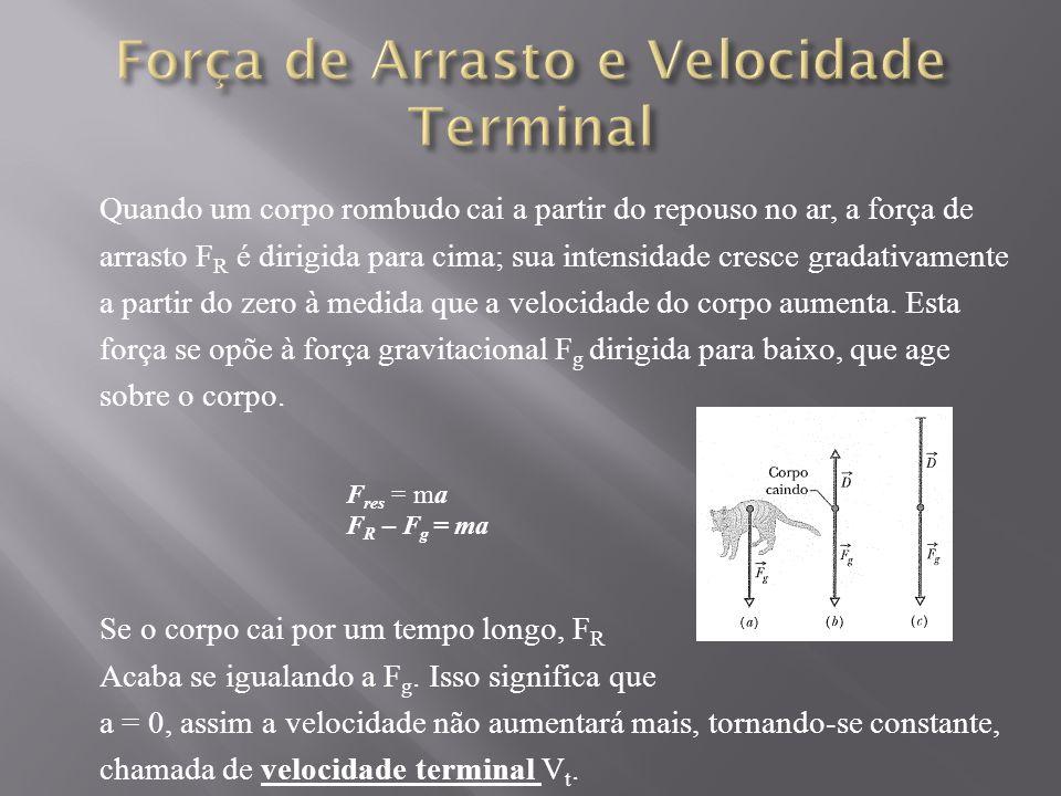 Força de Arrasto e Velocidade Terminal