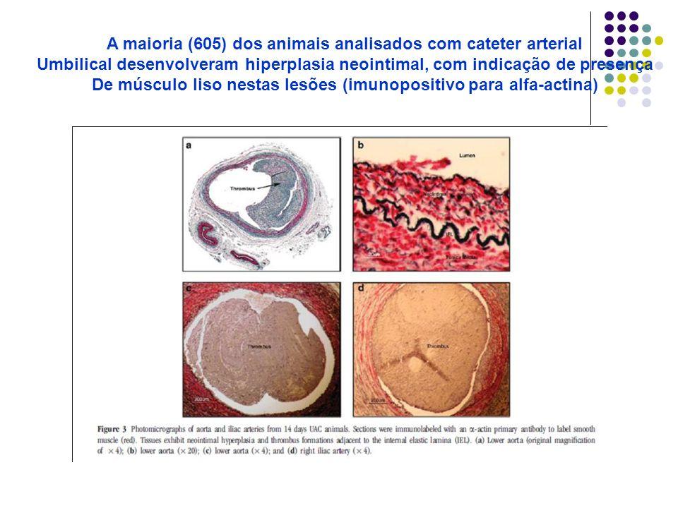 A maioria (605) dos animais analisados com cateter arterial