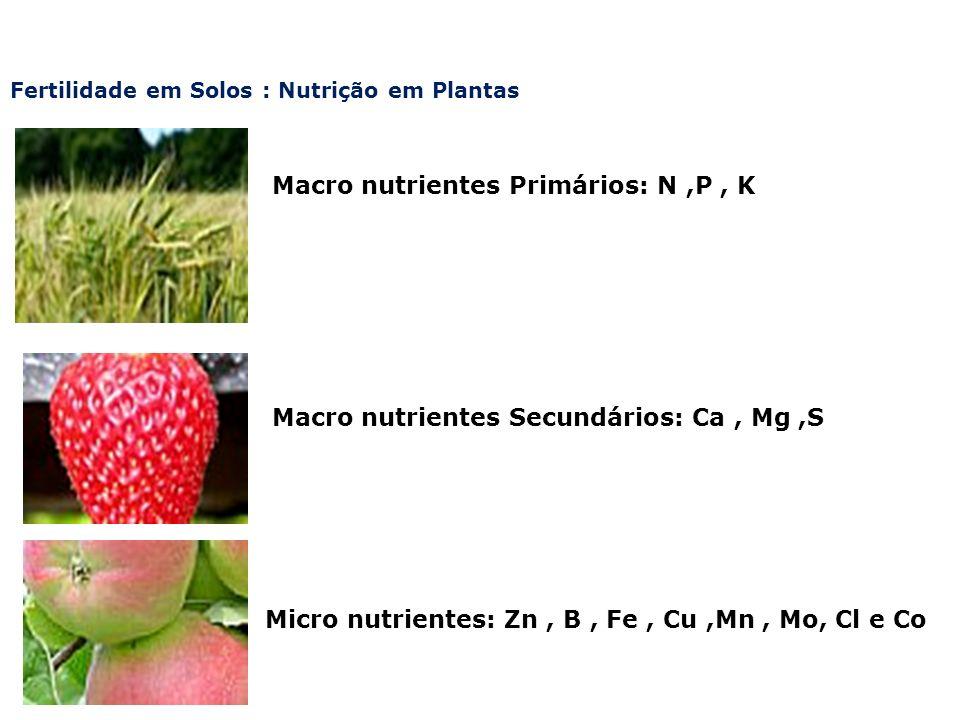 Macro nutrientes Primários: N ,P , K