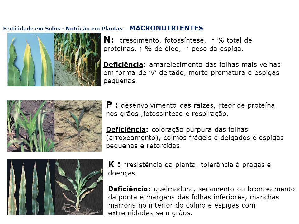K : ↑resistência da planta, tolerância à pragas e doenças.