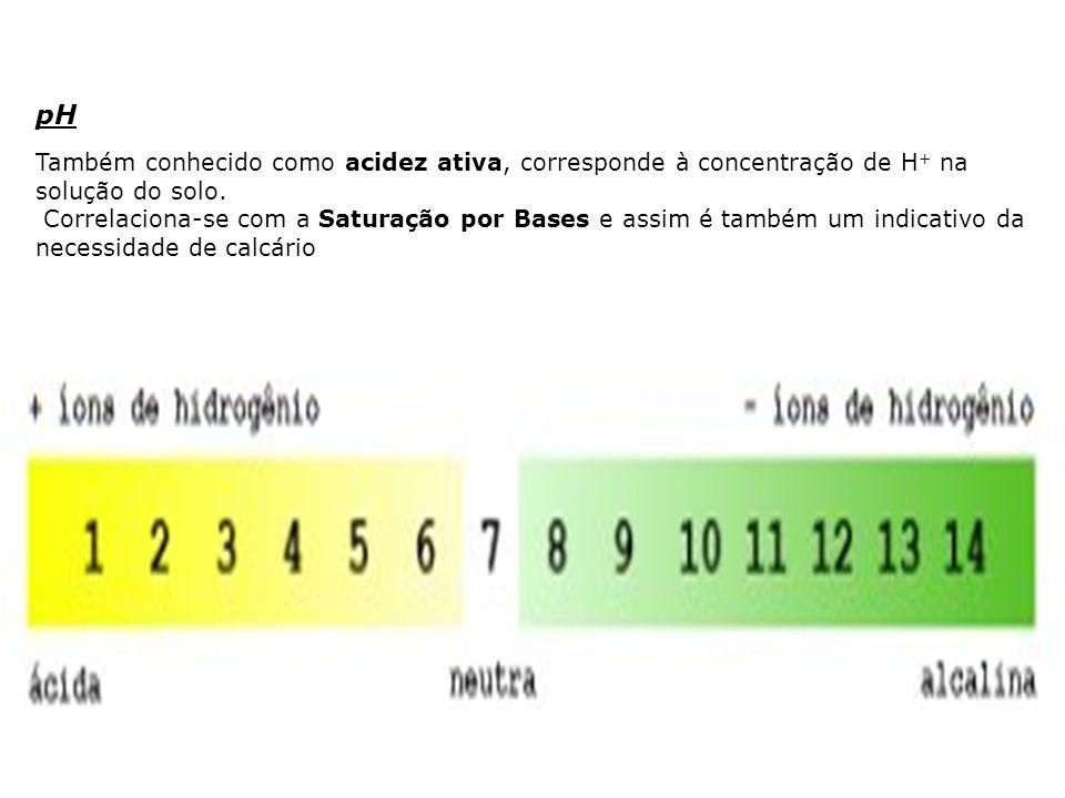 pH Também conhecido como acidez ativa, corresponde à concentração de H+ na solução do solo.