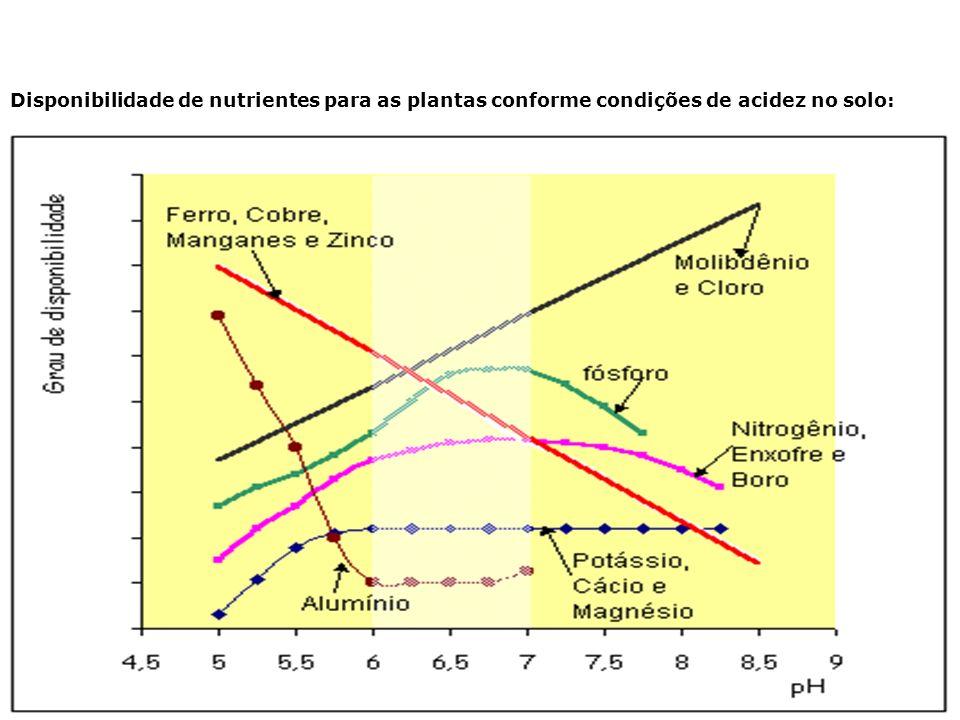 Disponibilidade de nutrientes para as plantas conforme condições de acidez no solo: