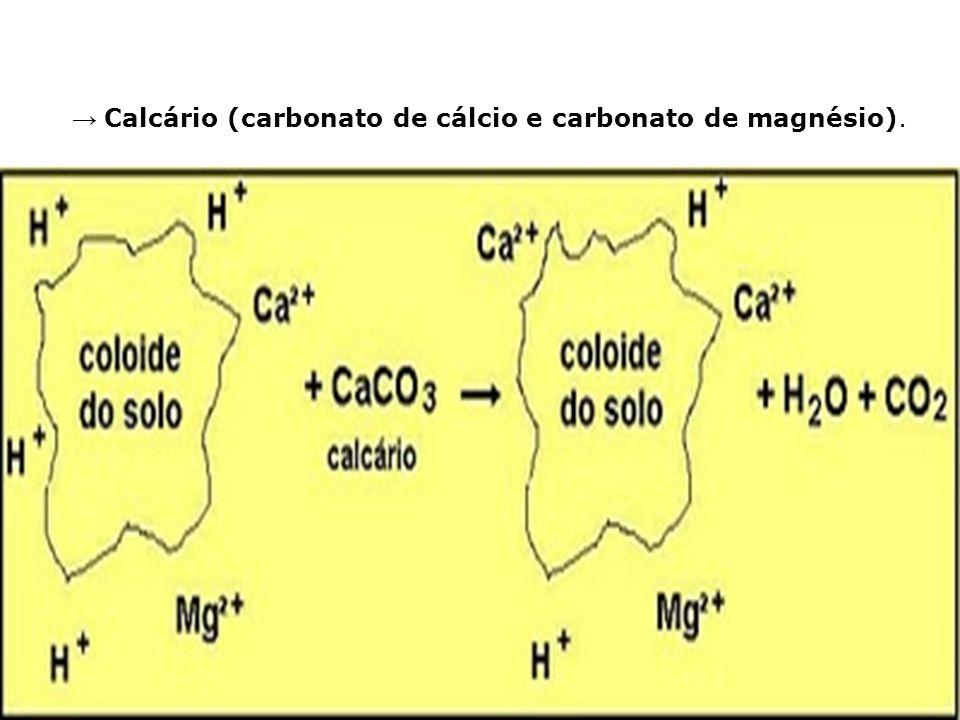 → Calcário (carbonato de cálcio e carbonato de magnésio).