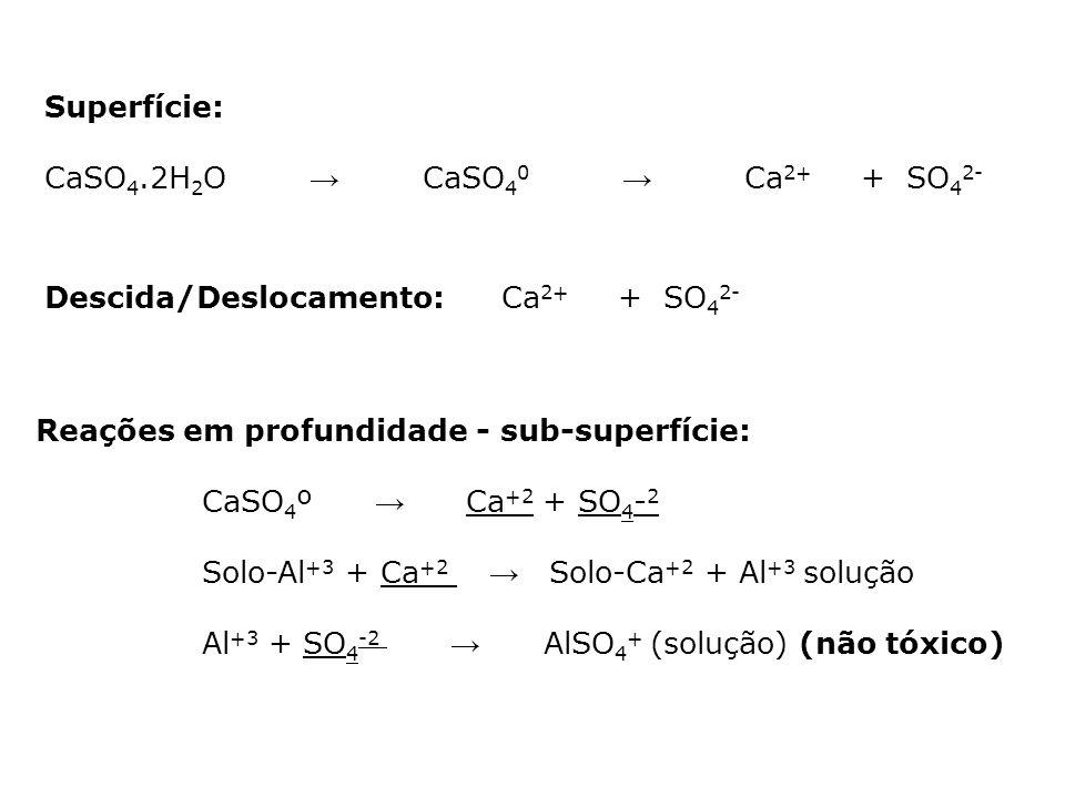 Superfície: CaSO4.2H2O → CaSO40 → Ca2+ + SO42- Descida/Deslocamento: