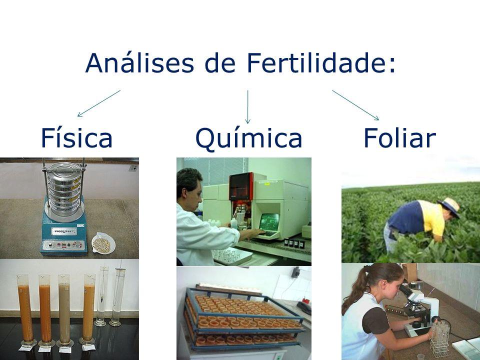 Análises de Fertilidade:
