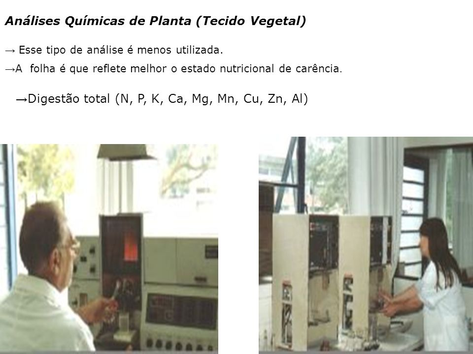 Análises Químicas de Planta (Tecido Vegetal)