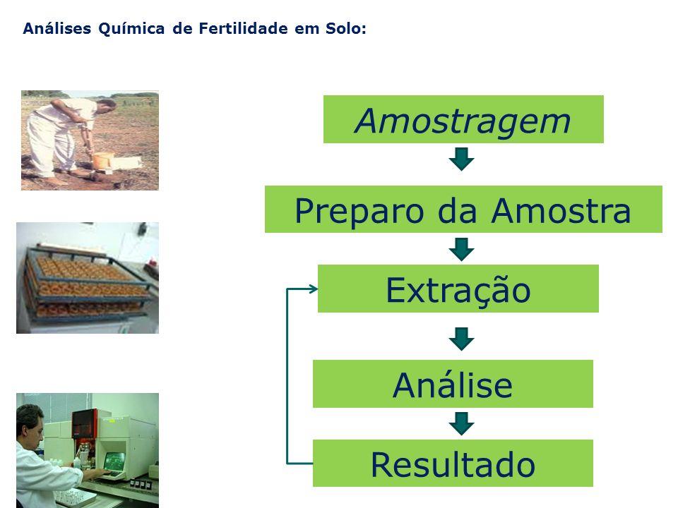 Amostragem Preparo da Amostra Extração Análise Resultado