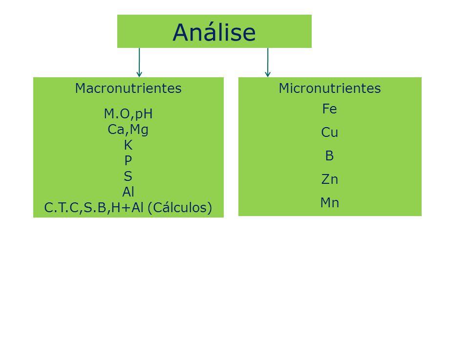 Análise Macronutrientes M.O,pH Ca,Mg K P S Al