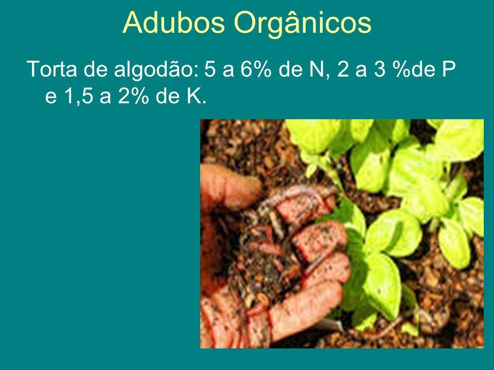 Adubos Orgânicos Torta de algodão: 5 a 6% de N, 2 a 3 %de P e 1,5 a 2% de K.