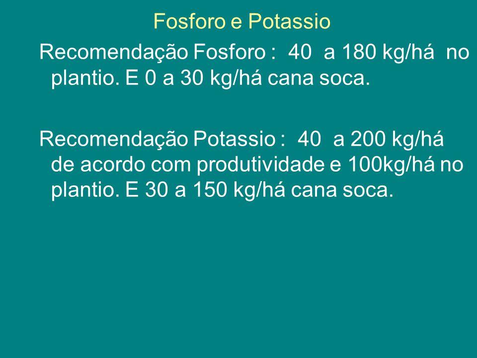 Fosforo e Potassio
