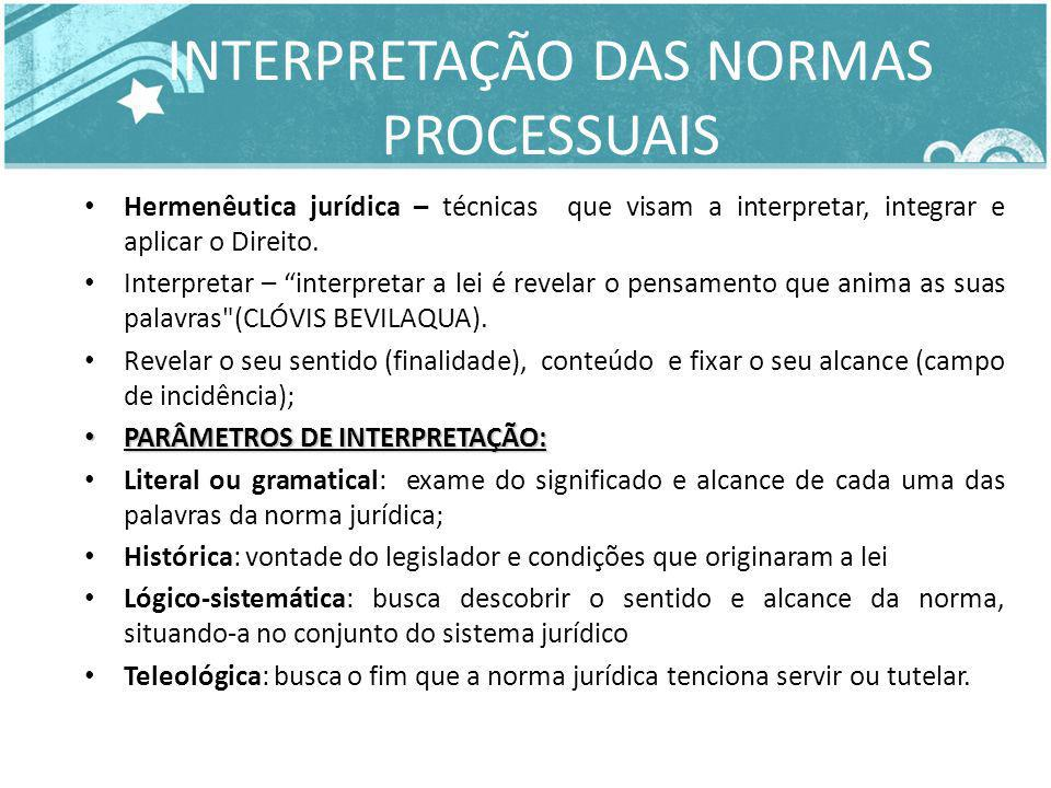 INTERPRETAÇÃO DAS NORMAS PROCESSUAIS