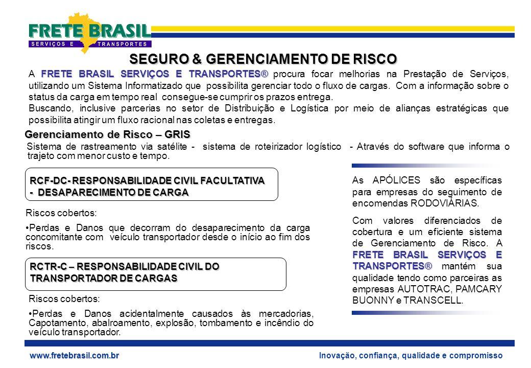 SEGURO & GERENCIAMENTO DE RISCO