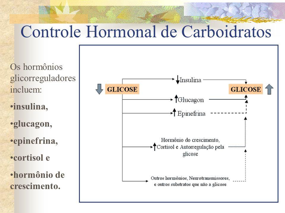 Controle Hormonal de Carboidratos