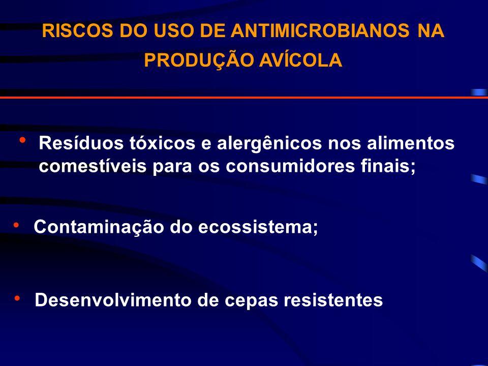 RISCOS DO USO DE ANTIMICROBIANOS NA PRODUÇÃO AVÍCOLA
