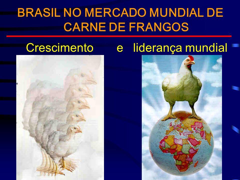 BRASIL NO MERCADO MUNDIAL DE CARNE DE FRANGOS