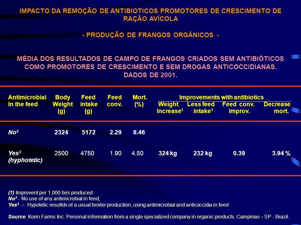 - PRODUÇÃO DE FRANGOS ORGÂNICOS -